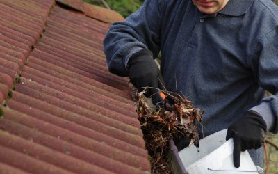 Factors To Consider In New Gutters Cost